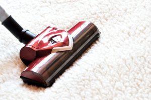 Staubsauger reinigt Teppichboden